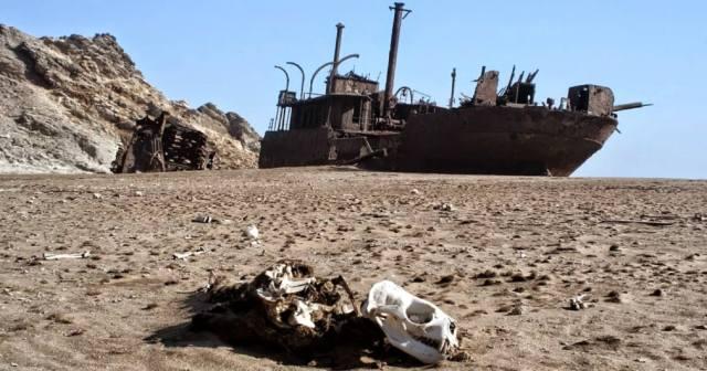 Где находится Берег скелетов в Намибии?