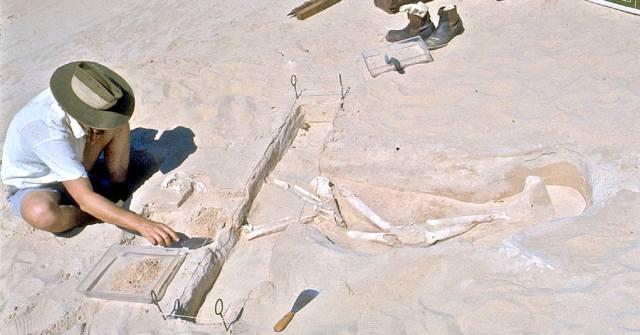 Человек Мунго — окаменелости озера