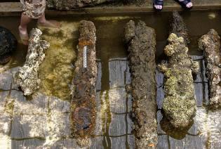 Фото: пушки Моргана найденные подводными археологами
