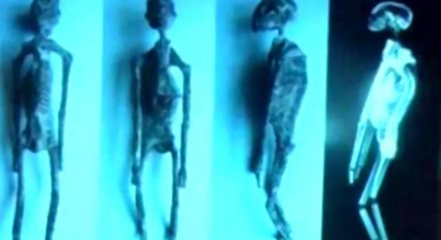 Тела пришельцев — сенсация или подделка?