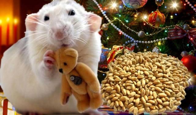Новый Год Белой Крысы по фэн-шуй
