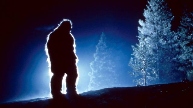 Снежный человек — загадка остаётся