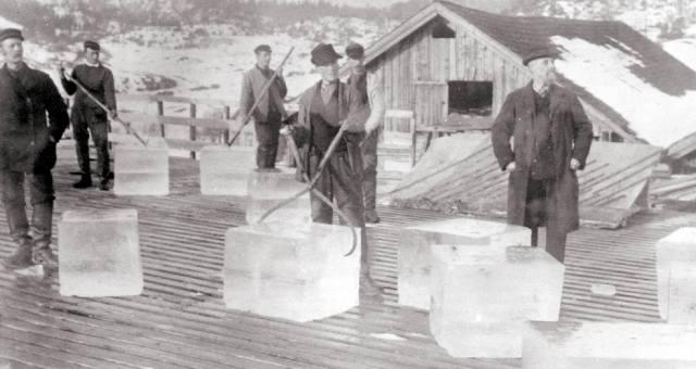 Фредерик Тюдор: Король льда