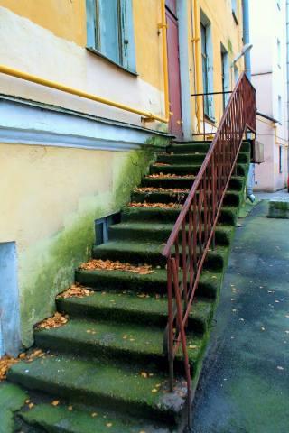 Замшелая лестница