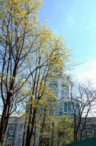 Вид на башню Кунсткамеры из двора