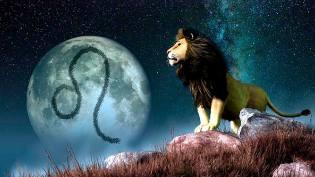 Фото: Лев — астропрогноз на июль
