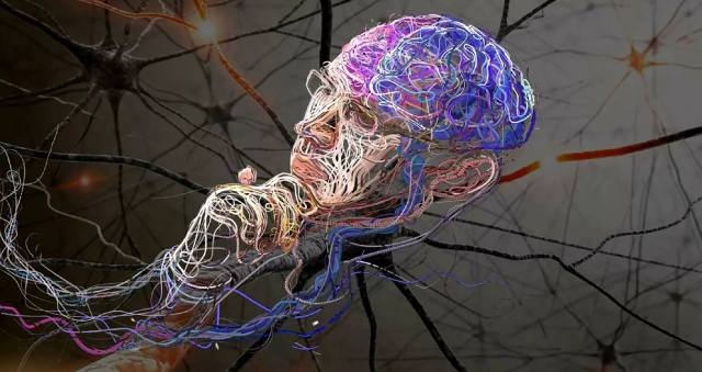 Возможно ли создание искусственного мозга?