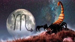 Фото: Скорпион — астропрогноз на июль