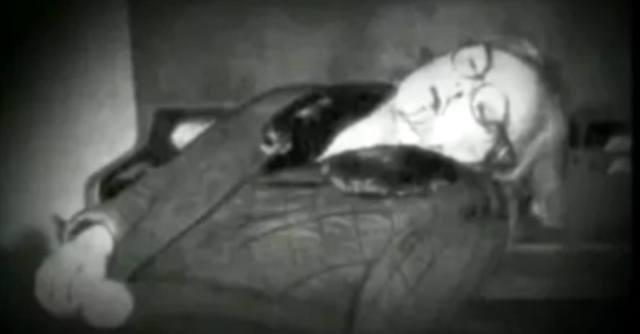 Зоя Фёдорова: версия убийства