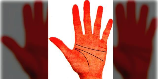 Линия брака на руке женщины с её расшифровкой