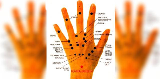 Точечный массаж руки для здоровья всего организма