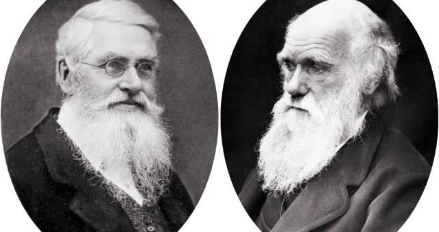 Альфред Уоллес и его вклад в биологию