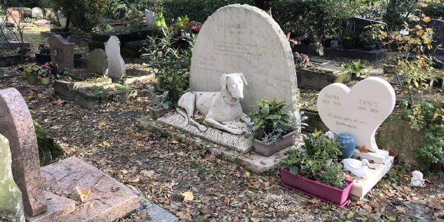 Кладбище домашних животных в Германии