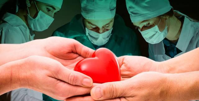 Как пересадка сердца изменяет душа человека?