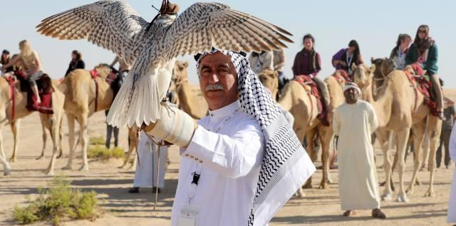 Соколиная охота — птицы для царской забавы