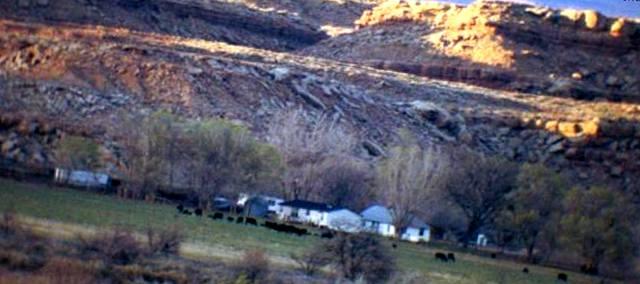 Адское ранчо Терри Шерман
