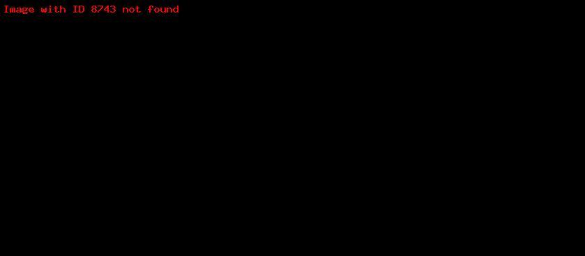 Голубиная почта — история сообщений