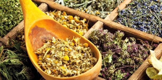Какие травы защитят от радиации?