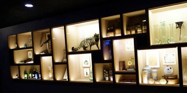 Музей парфюмерии Фрагонар в Париже