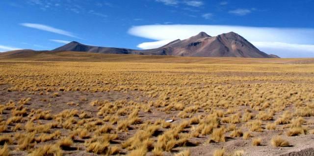 Пустыня Атакама — интересные факты