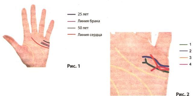Линия брака на руке с расшифровкой