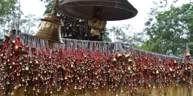 Кальпаврикша — дерево желаний и Тилинга Мандир — храм колоколов в Индии