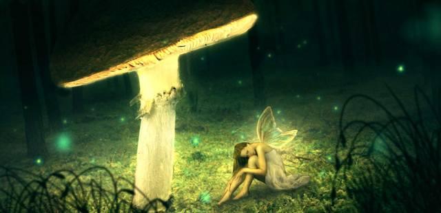 Магически и мистические свойства грибов