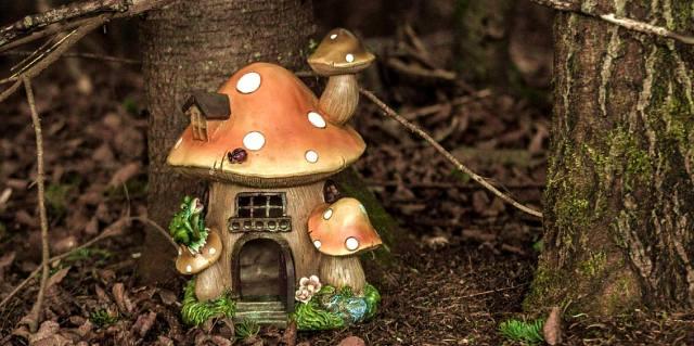 Магия грибов